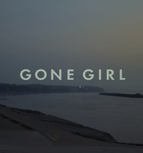 Conclusions on Gone Girl